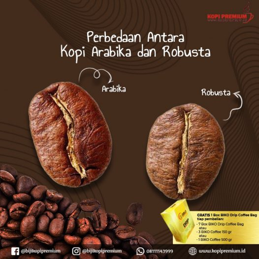 kopi arabika robusta
